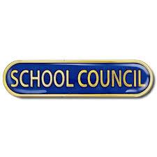 School Council Survey